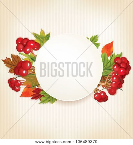 Autumn Banner With Viburnum and Colorful Leaves. Vector illustration