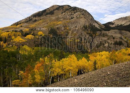 Rocky Mountain Autumn Near Crested Bute Colorado
