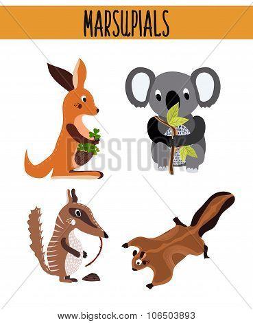 Cartoon Set of Cute Animals marsupials living in Australia and its Islands. Kangaroo, squirrel, numb
