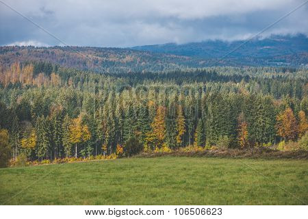 Landscape, autumn view of colorful forest