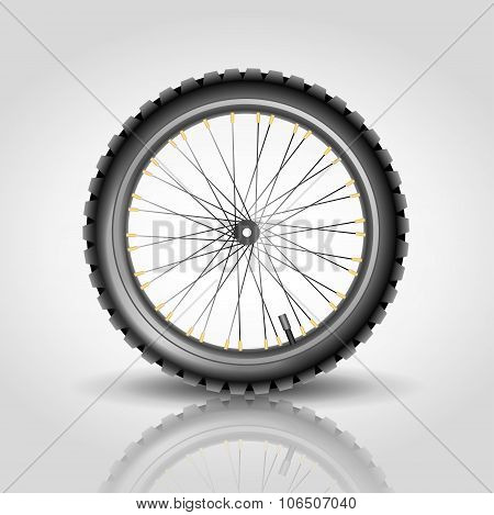A bicycle wheel