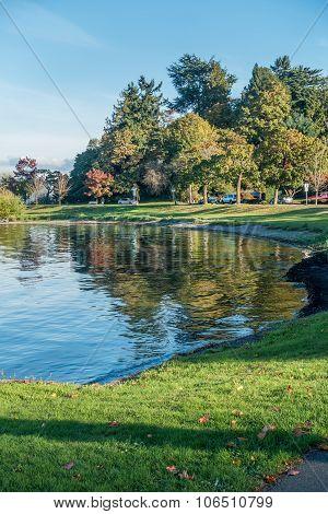 Lake Washington - Shoreline 7