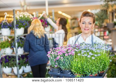 Portrait of confident female florist carrying flower plants with colleague assisting customer in background at shop