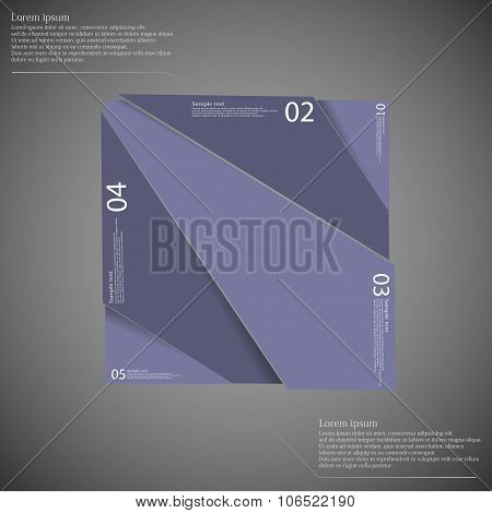 Rectangle Infographic Template Divided To Five Purple Parts