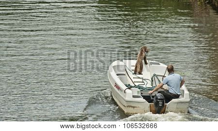 Man and dog In The Boat