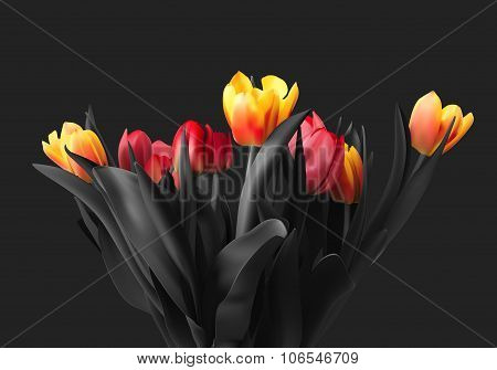 Colorful bouquet of tulips vector.