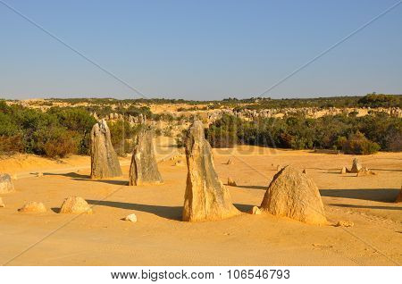 Pinnacles Desert Landscape