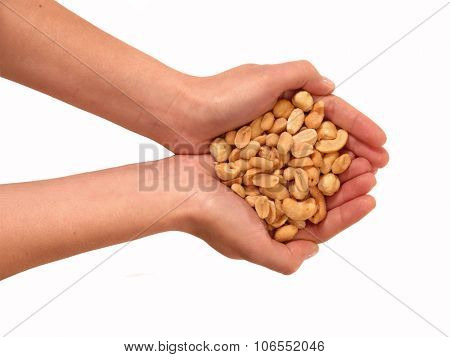 Handful nuts on White background. Holding walnuts.