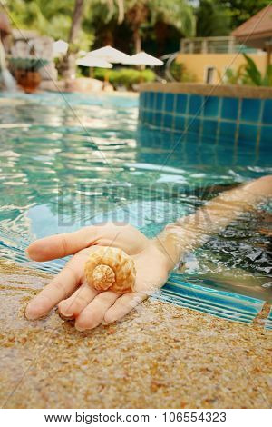 Conch In Hand Of Woman At Swimming Pool.