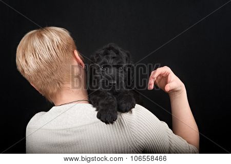 puppy big black terrier