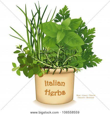 Italian Herb Garden Planter