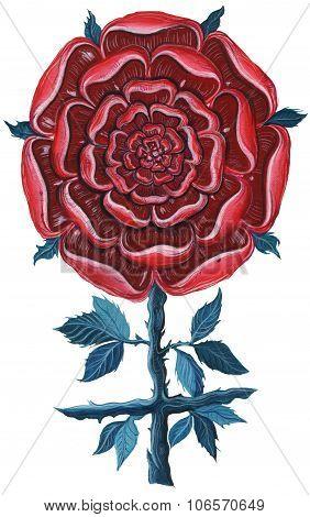 Mandala Rose.