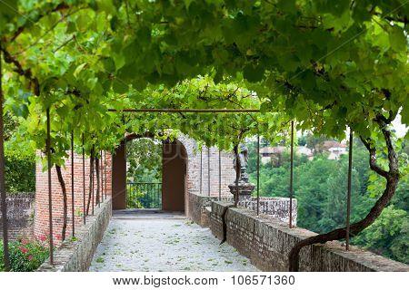 Palais De La Berbie Gardens Alley At Albi, Tarn, France