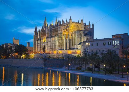 Cathedral San Seu In  Palma De Mallorca By Night
