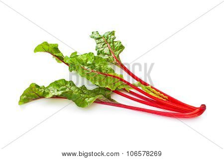 Swiss chard vegetable isolated on white background