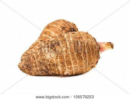 Taro Root Isolated On White Background
