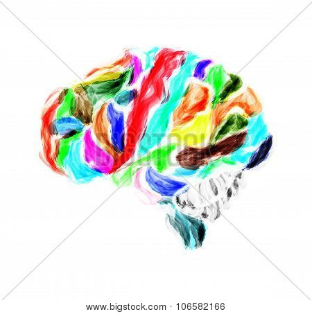 Multicolored Human Brain Painted With Watercolors. Vector Illustration