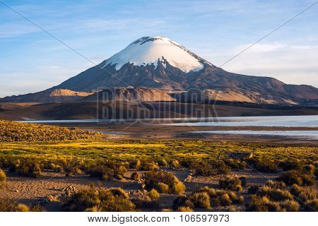 Snow Capped Parinacota Volcano Reflected In the Lake Chungara, Chile