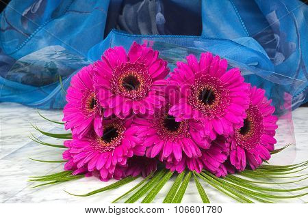 Bouquet Of Purple Gerber With A Blue Background On The Marble Table