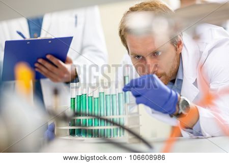 Chemical technician observing and checking liquid from test tube