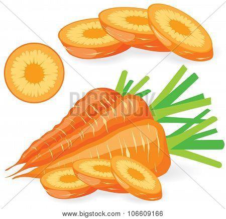 Sliced Carrots Vector Illustrations