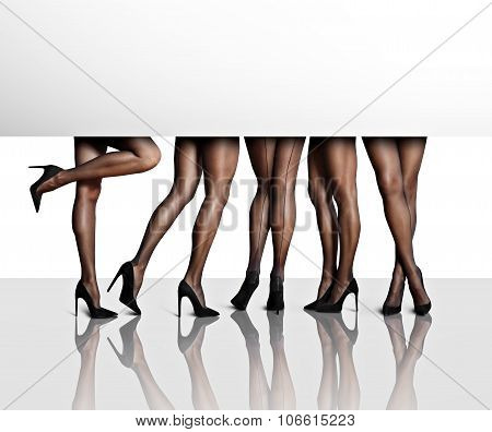 Perfect Shaped Women's Legs In A White Space