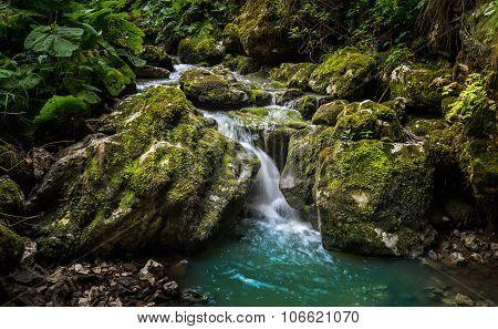 Creek Flowing