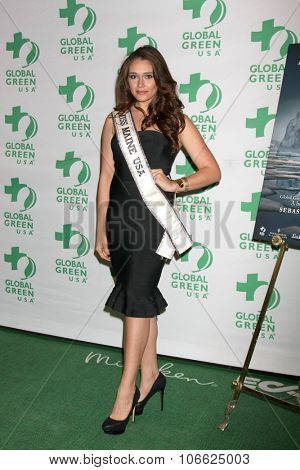 LOS ANGELES - OCT 29:  Heather Elwell at the Global Green Hosts Book Lauch of