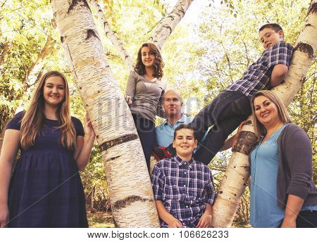 a cute family posing on a tree in a park toned with a retro vintage instagram filter effect app or action