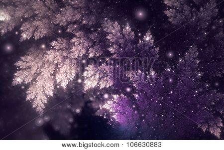 white-lilac branch