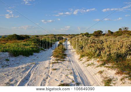 Sandy Coastal Path Landscape, Kangaroo Point, Western Australia