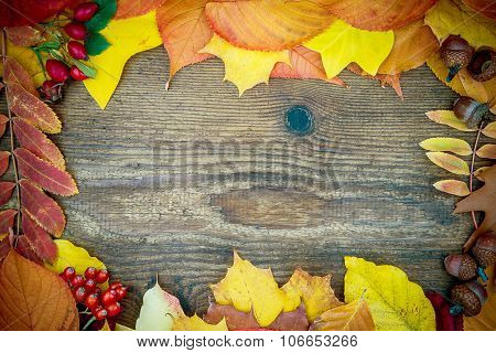 Old Wooden Board With Autumn Leaves