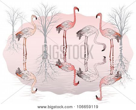 Nature Background With Group Of Pink Flamingo