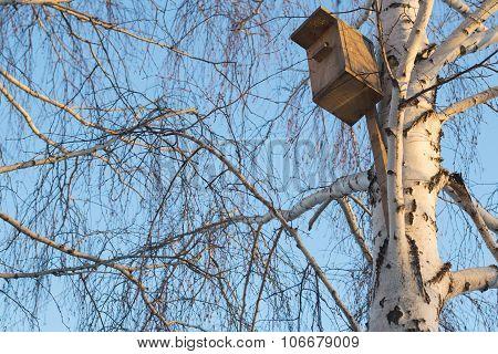 wooden birdhouse on winter tree blue bright sky