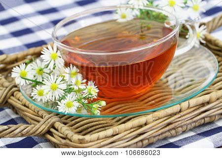 Cup of chamomile tea on wicker tray and fresh chamomile flowers