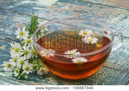 Chamomile tea with fresh and  dried chamomile herbs on rustic wooden surface