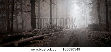 Three people in the woods in the foggy morning