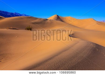 Mesquite Flat Sand Dunes. Bright sunny morning in a picturesque part of Death Valley, USA.  Thin waves on the sand