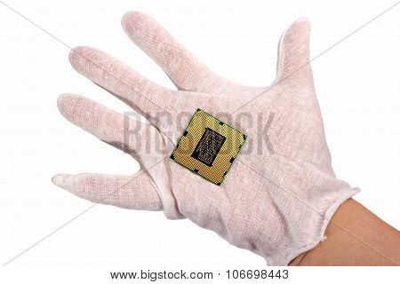 Electronic Collection - Hand Holds Computer Cpu Processor Chip Isolated On White Background