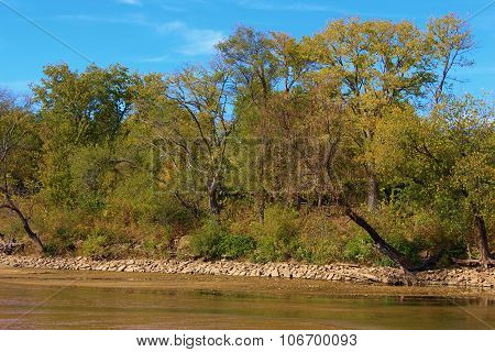 Trees changing colors during autumn foliage taken at the Arkansas River, KS