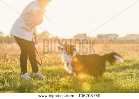 Middle Age Woman Playing With Her Border Collie Dog