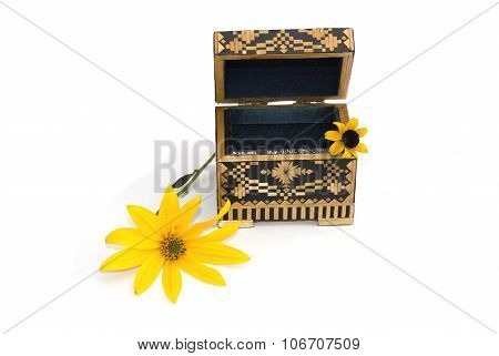 The Open Casket Decorated With Two Yellow Florets Isolate