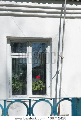 Red Flower In A Window In An Old Farmhouse