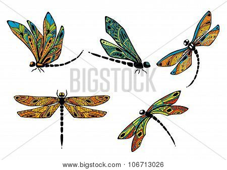 Dragonflies with ornamental openwork wings