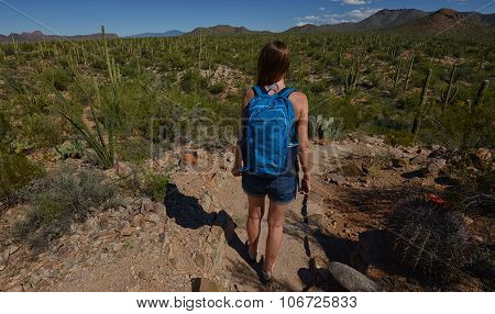 Desert Hike With Cacti And Mountains