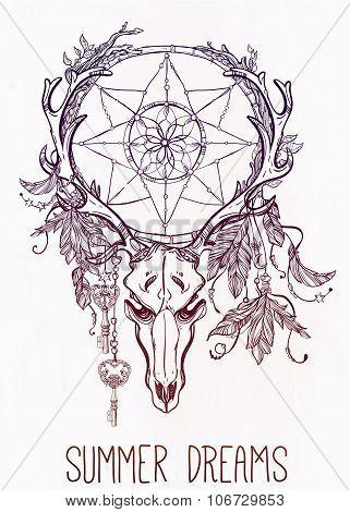 Dear skull and dreamcatcher lineart.