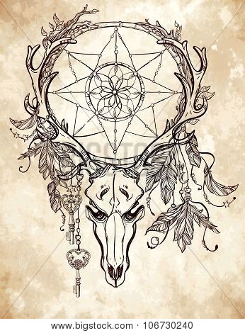 Dear skull and dreamcatcher lineart.