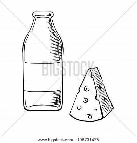 Bottle of milk and cheese sketches