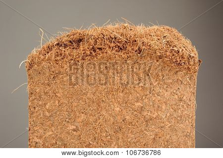 Coconut Coir Close-Up