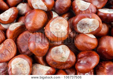 Chestnuts as background